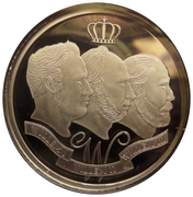 Token - Willem-Alexander Coronation – reverse