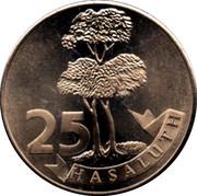 25 Hasaluth - Stad Hasselt – reverse