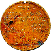 The Great War Peace Medallion – obverse