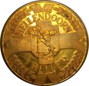 Token - Hellendoorn 900 years – obverse