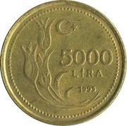 5000 Lira -  reverse