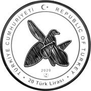 20 Lira (Karabakh) – obverse