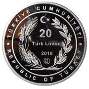 20 Lira (Ismail Hakkı Dümbüllu) – obverse