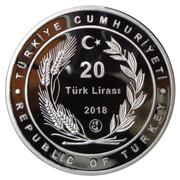 20 Lira (Şeyh Edebali) – obverse