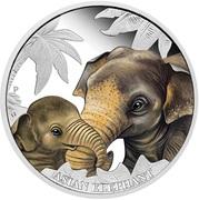50 Cents - Elizabeth II (Asian Elephant) – reverse