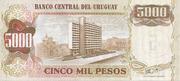 5 Nuevos Pesos (Overprinted on 5 000 Pesos) -  reverse
