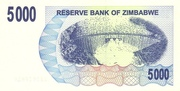 5 000 Dollars (Bearer Cheque) – reverse