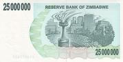 25 000 000 Dollars (Bearer Cheque) – reverse